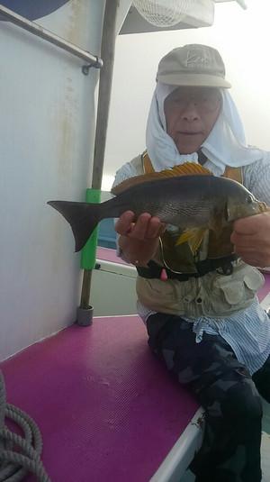 Kimg2438